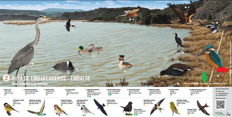 rutas ornitologicas