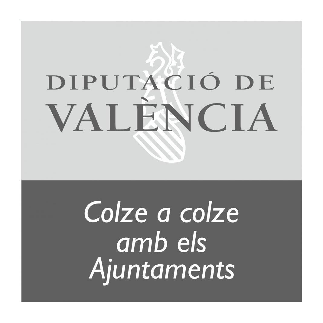 Acuerdo de Aceptación de Subvención de la Diputación Provincial de Valencia